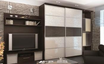 Гостиные шкафы-купе - как выбрать, секреты наполнения, виды и идеи для дизайна!