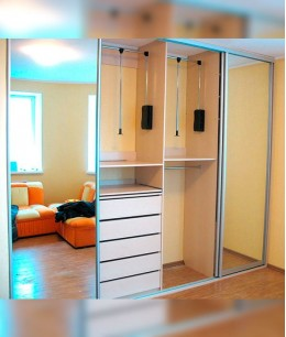Двери для встроенного шкафа в зал